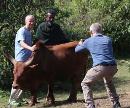 On the road to Gondar. Javier and Francesc having a photo op with a cooperative farmer and his ox.